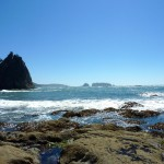 Olympic NP: Tide Pools, Sea Stacks and Rain Forests (oh my!)