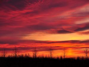sunset+1