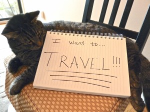 I want to travel!