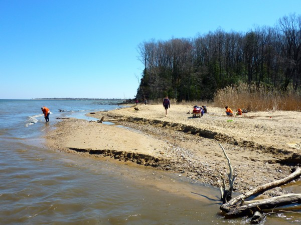 Calvert Cliffs State Park- beach