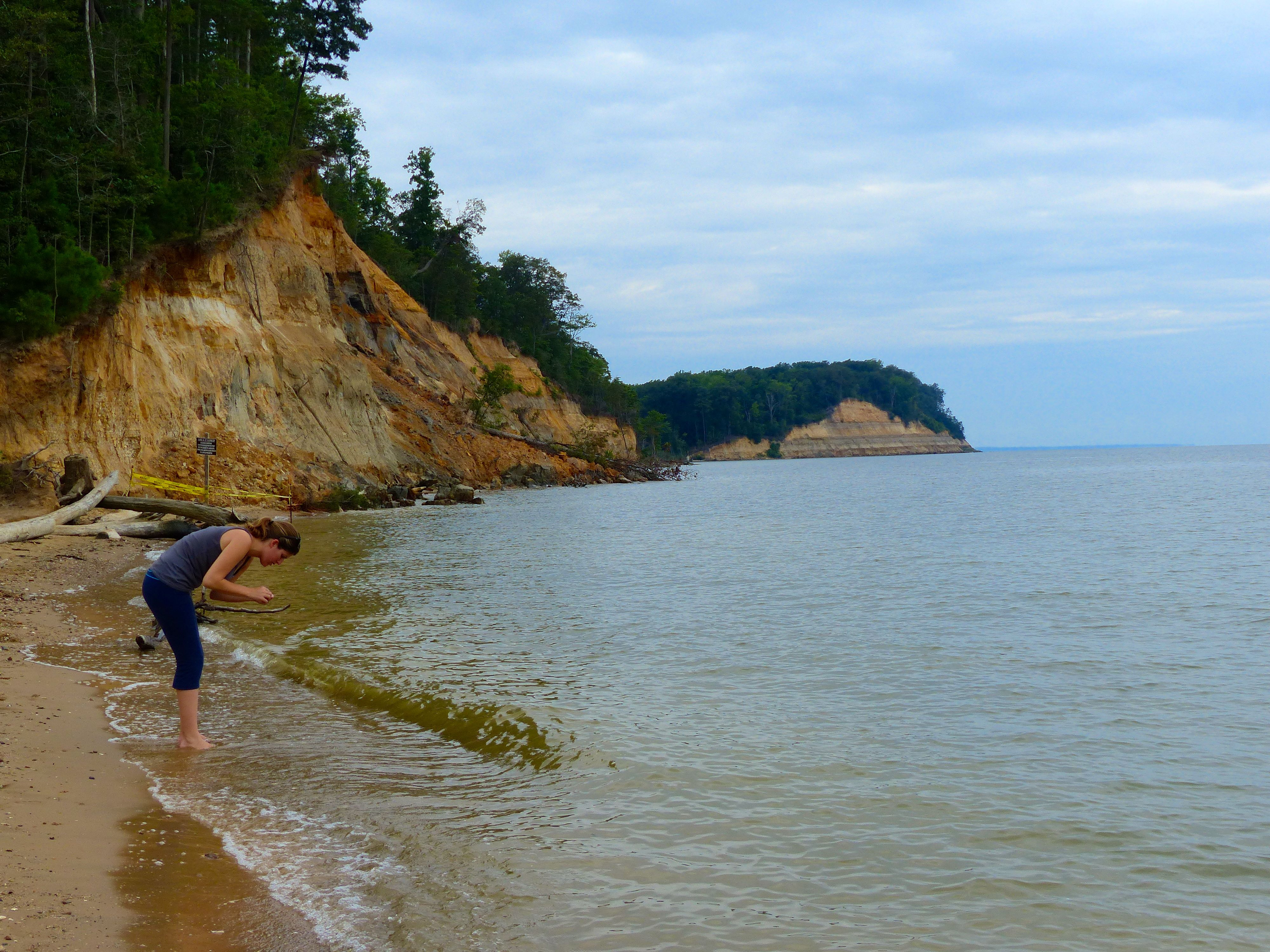 Fossil Hunting in Maryland: Be a Paleontologist for a Day!