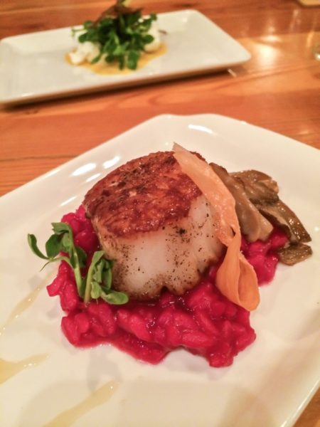 Wine Kitchen- scallop and beet risotto