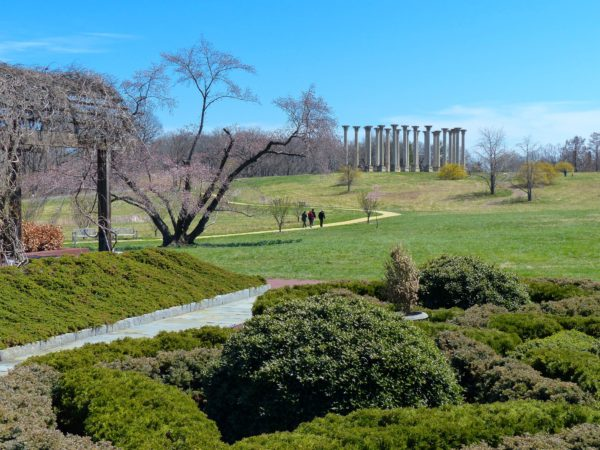 National Arboretum- Capitol Columns from afar 2