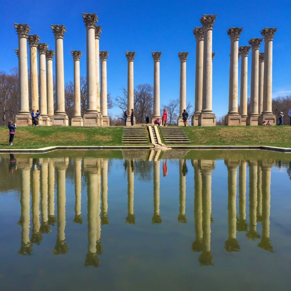 National Arboretum- Capitol Columns reflection