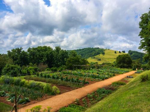 Charlottesville- Monticello- garden