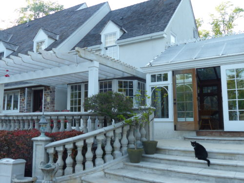 Bucks County- Inn at Bowman Hill- cat on back porch