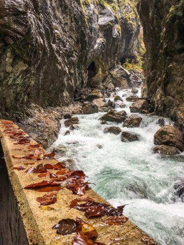 Partnach Gorge- fall leaves